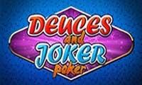 Гаминатор Двойки и Джокер
